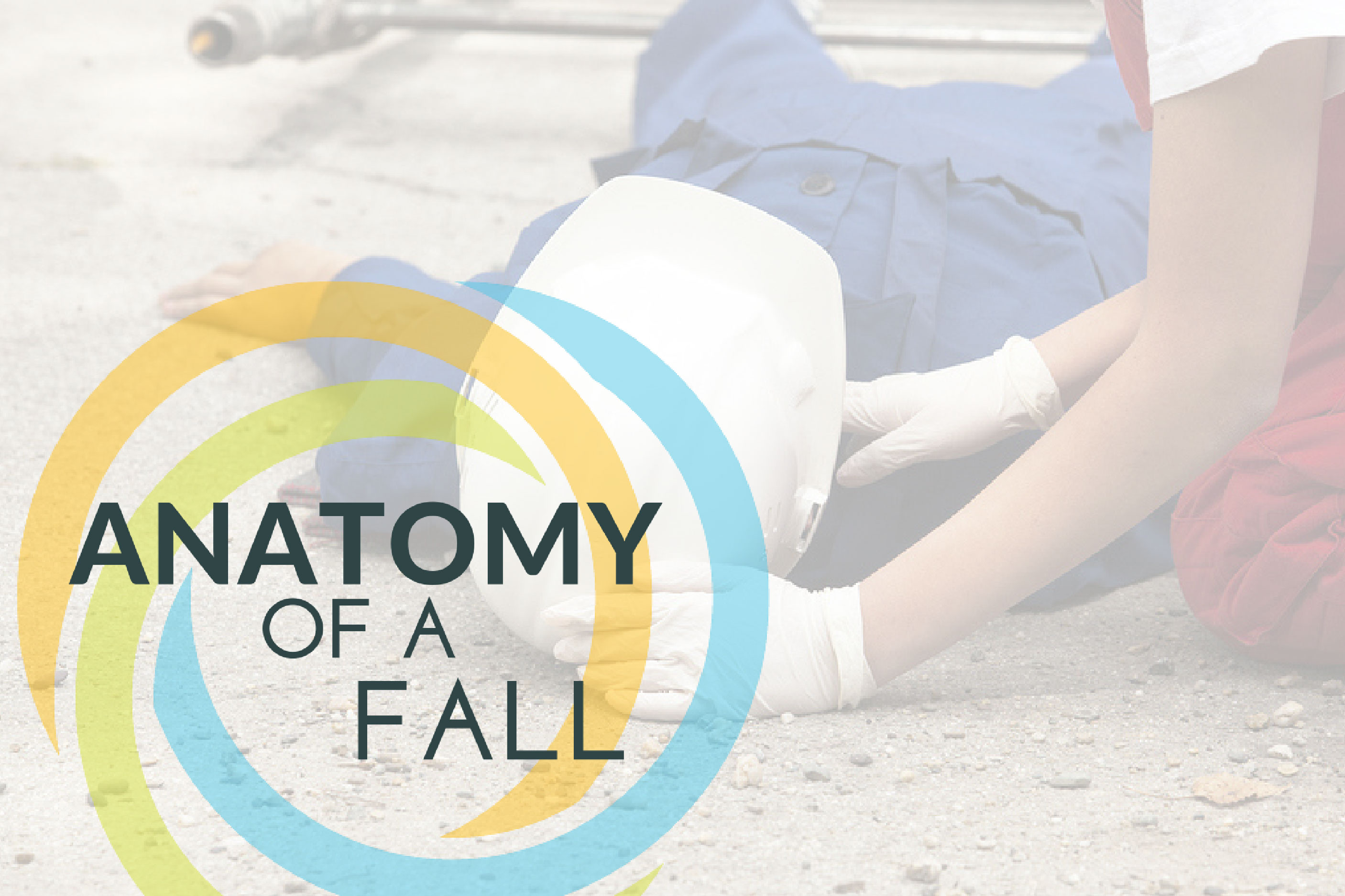 Anatomy Of a Fall